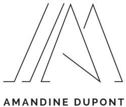 Œuvre de l'artiste AMANDINE DUPONT