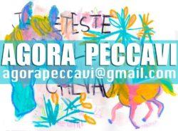 Image de la news Agora Peccavi