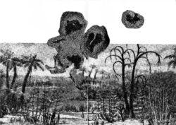 Œuvre de l'artiste Elsa Stubbé